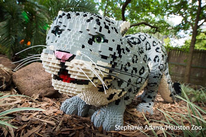 精美的乐高动物造型使用了77万多块乐高积木,耗费了6500多个小时才